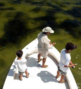 Family Charter Fishing Tampa/St. Petersburg.