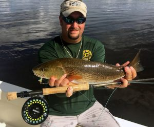 Redfish on Fly aboard Afishionado in Tampa Bay.