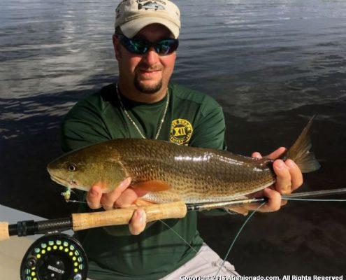 #TampaBayRedfish