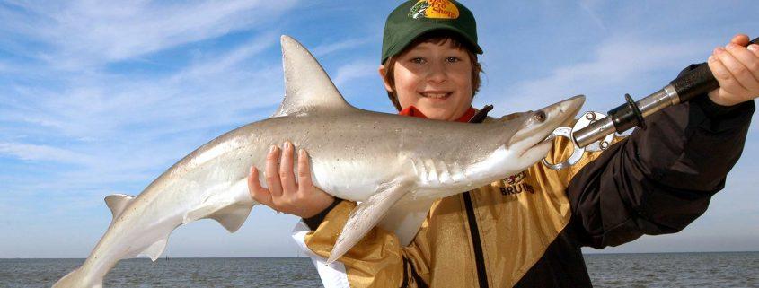 Shark Fishing in Tampa
